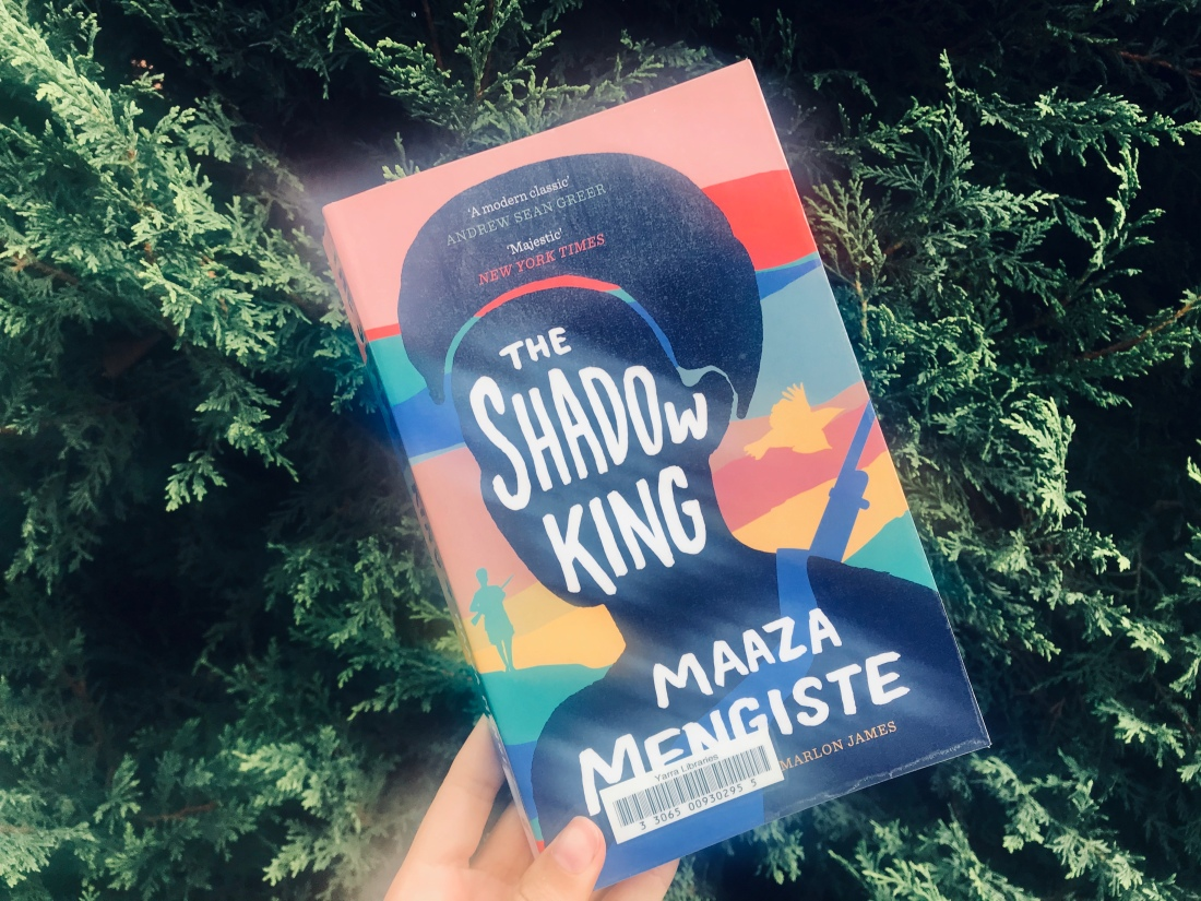 The Shadow King book – woman's silhouette on colourful battlefield