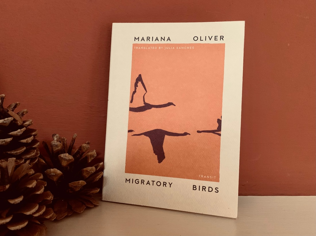 migratory birds book with cranes silhouettes against rusty orange background